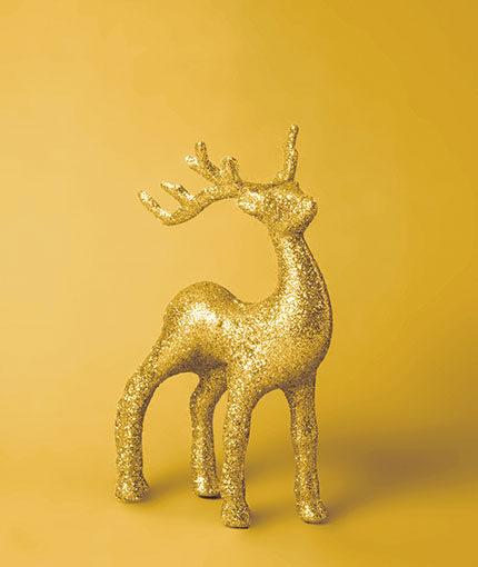 Little Stars Glitzermagie Sprühfarbe - Produktslider_0000_Produktslider_0001_LS_Glitter_Gold_01_stock