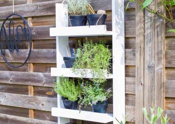 DIY: Kräuterregal für Balkon und Terrasse